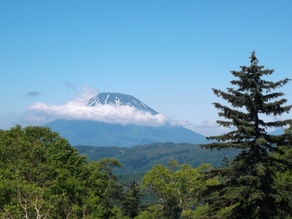 There is a clear blue sky above.  In the center of the picture we see a conical mountain with streaks of snow running down in and a cloud cutting across it horizontally.  On the right we see a pine tree, and at the bottom of the picture we see a green forest.