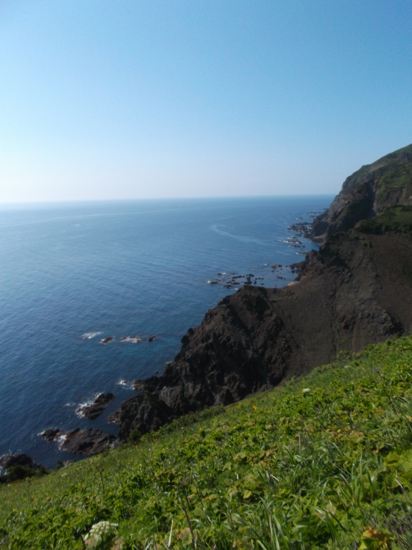 At the top of the picture we see clear blue sky.  Below is the blue sea, with tall, rocky, black cliffs forming a diagonal line going from the lower-left to the upper-right.  At the bottom of the picture is a slope covered with green plants.