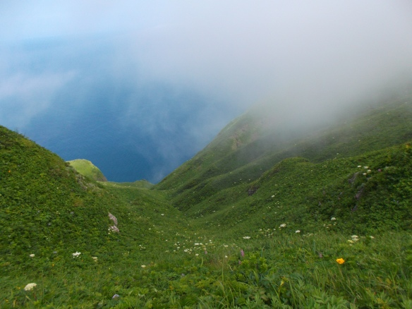 In the upper left we see a bit of blue sky and the deep blue sea, and in the upper right we see clouds coming in.  The lower part of the picture shows the convergence of two green slopes dotted with colorful wildflowers.