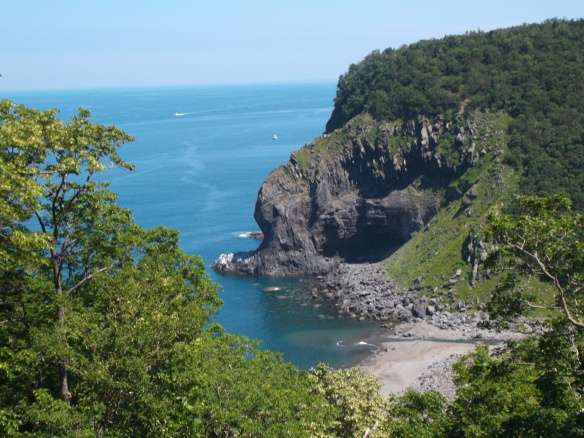 At the top we see blue sky.  In the top right we see blue sea, and in the top left we see a cliff with forest at the top descending diagonally into the ocean in a twisty way.  There is a river mouth and a little beach just below the cliff.  In the foreground are some trees running diagonally from upper left to lower right in the lower left of the picture.