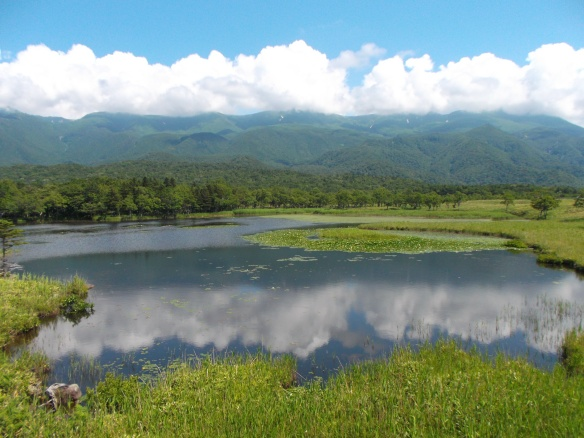 At the top we see clear blue sky, and then we see a horizontal line of green mountains blanketed by white clouds.  We see a line of forest.  In the bottom half of the picture is a rectangular looking lake which acts as a mirror, reflecting the mountains, clouds, and sky above.