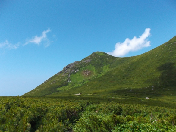 We see a clear blue sky with two clouds, with one cloud coming up from behind one of the Mitsumine peaks at the same angle as the mountain slope itself.  The peak itself is gree, with a field of brush pine in the foreground at the bottom of the picture.