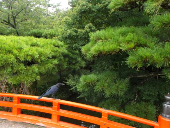 There are green short stone pine trees.  On the bottom is a curving, orange wooden bridge, and a raven is sitting on top of the orange railing in the bottom left corner of the picture