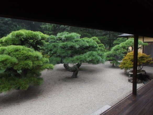 Looking out of the wooden platform, we see a group of elegantly prune bonsai pine trees in a field of carefully raked gravel