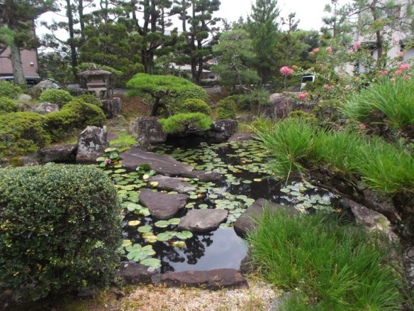 The phot shows a pond with various water plants and rocky islets, and little bonsai pine trees at the edge of the pond.  There are some pink flowers visible on the right side in the background
