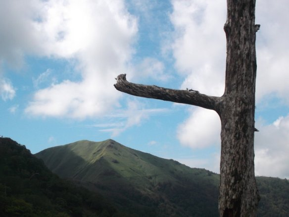 In the foreground, on the right, is the shadow of a dead tree, with a single truncated branch extending to the left.  In the background there is a blue sky which is about to be swarmed by white clouds, with a green mountain peak below.  The top of the peak is still in the sun, but it's clear that the shadows of the clouds will soon thrust the entire mountain into darkness.