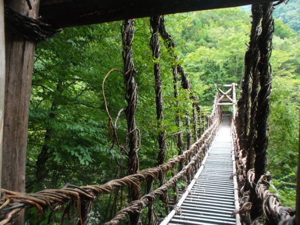 We are on a suspension bridge made out of vines extending forward toward the right, leading into a thick patch of leafy tree branches.