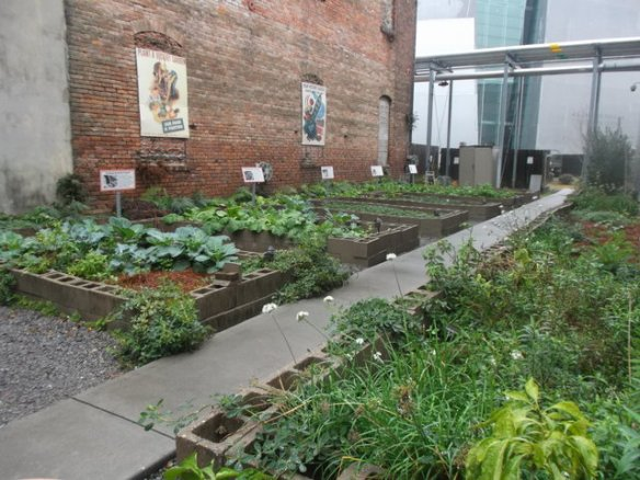 """I like looking at community gardens to see what vegetables the local people are growing. I like that this place is decorated with 1940s """"Victory Garden"""" posters."""