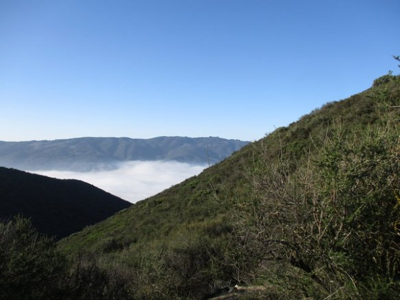 Hills covered with chaparral with a blue sky and a valley filled with fog.